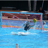 6 Water Polo Tournamet